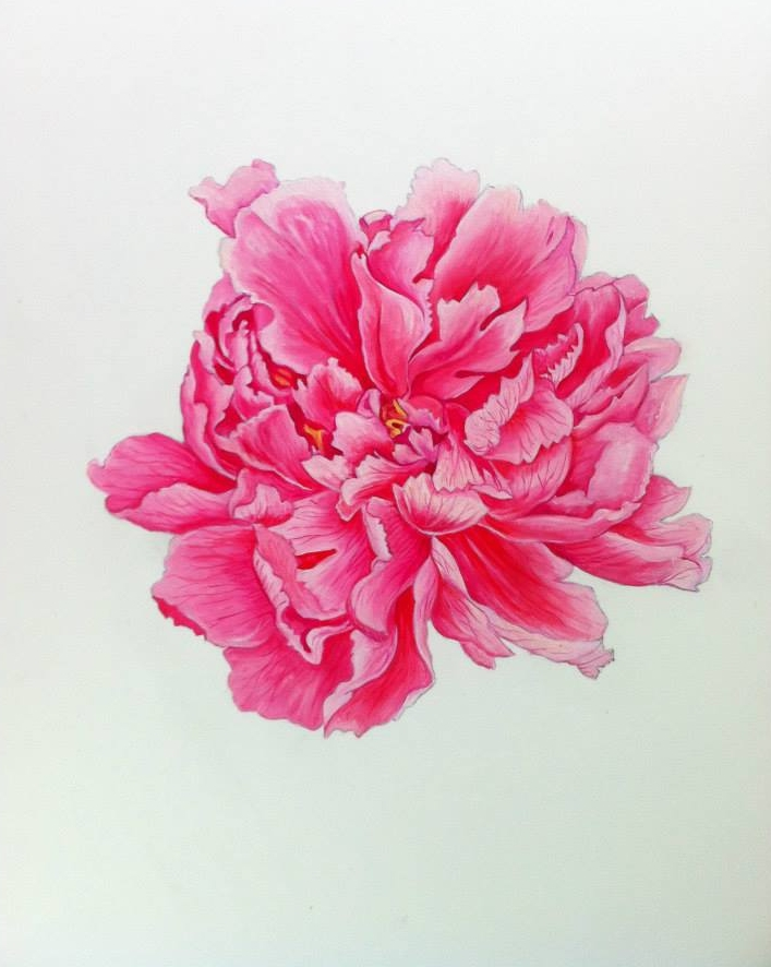 My Flower for Oscar de la Renta   I worked acrylic on an mda base with over-saturated colors, to go to print in fabric.