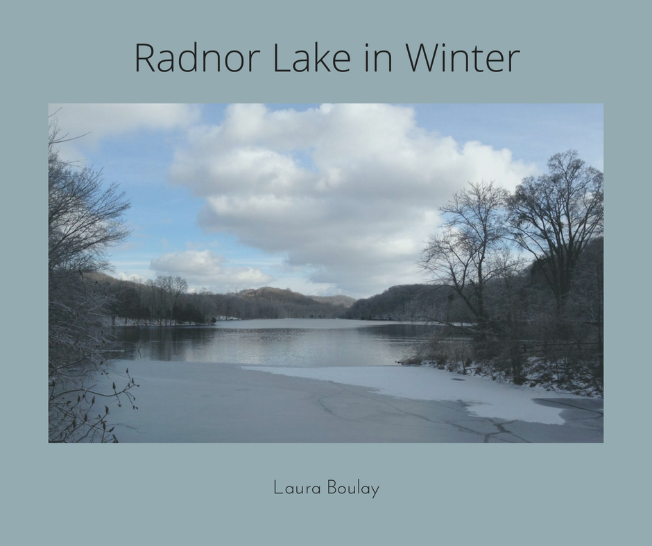 Radnor Lake in Winter.png