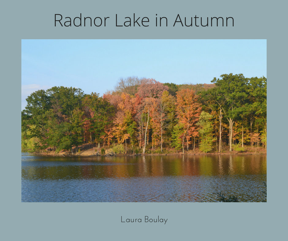 Radnor Lake in Autumn.png