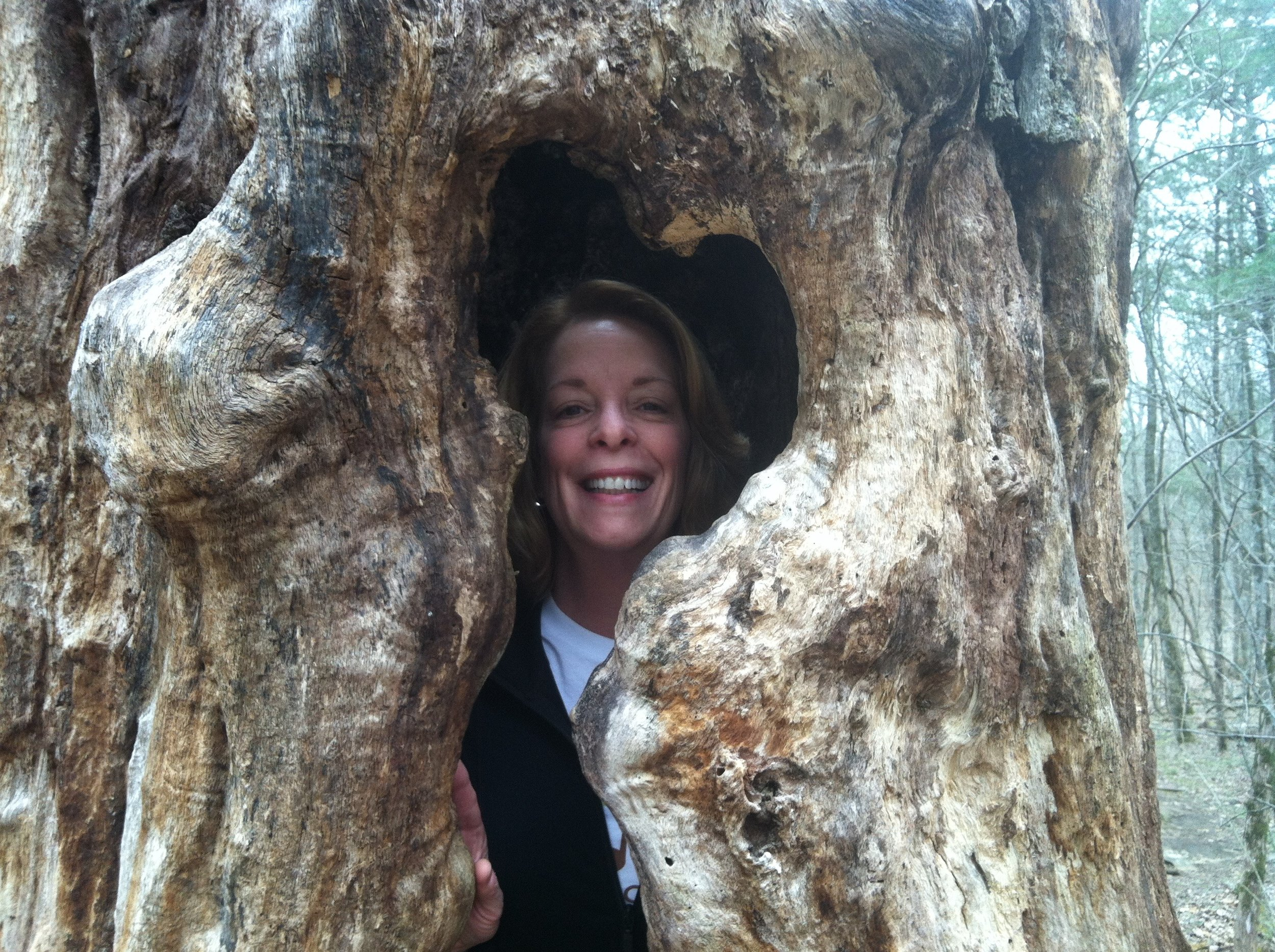 This is Peggy being hugged by a hollow tree shaped like a heart. February is heart health month. The synchronicity of this makes me smile. Happy Heart Health Month Peggy!