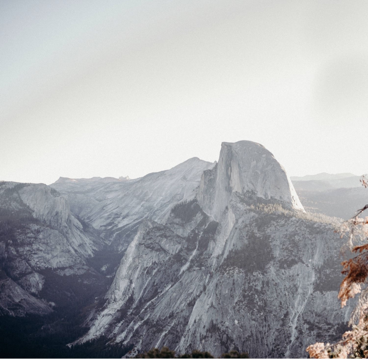 13_alex+matt-wedding-107_park_national_elopement_wedding_yosemite_intimate.jpg