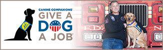 Give a Dog a Job banner.jpg