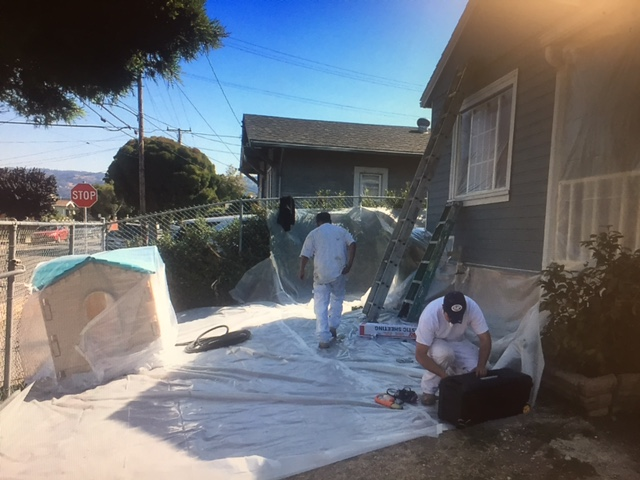 Employees Working Safely to Remove Lead Paintin