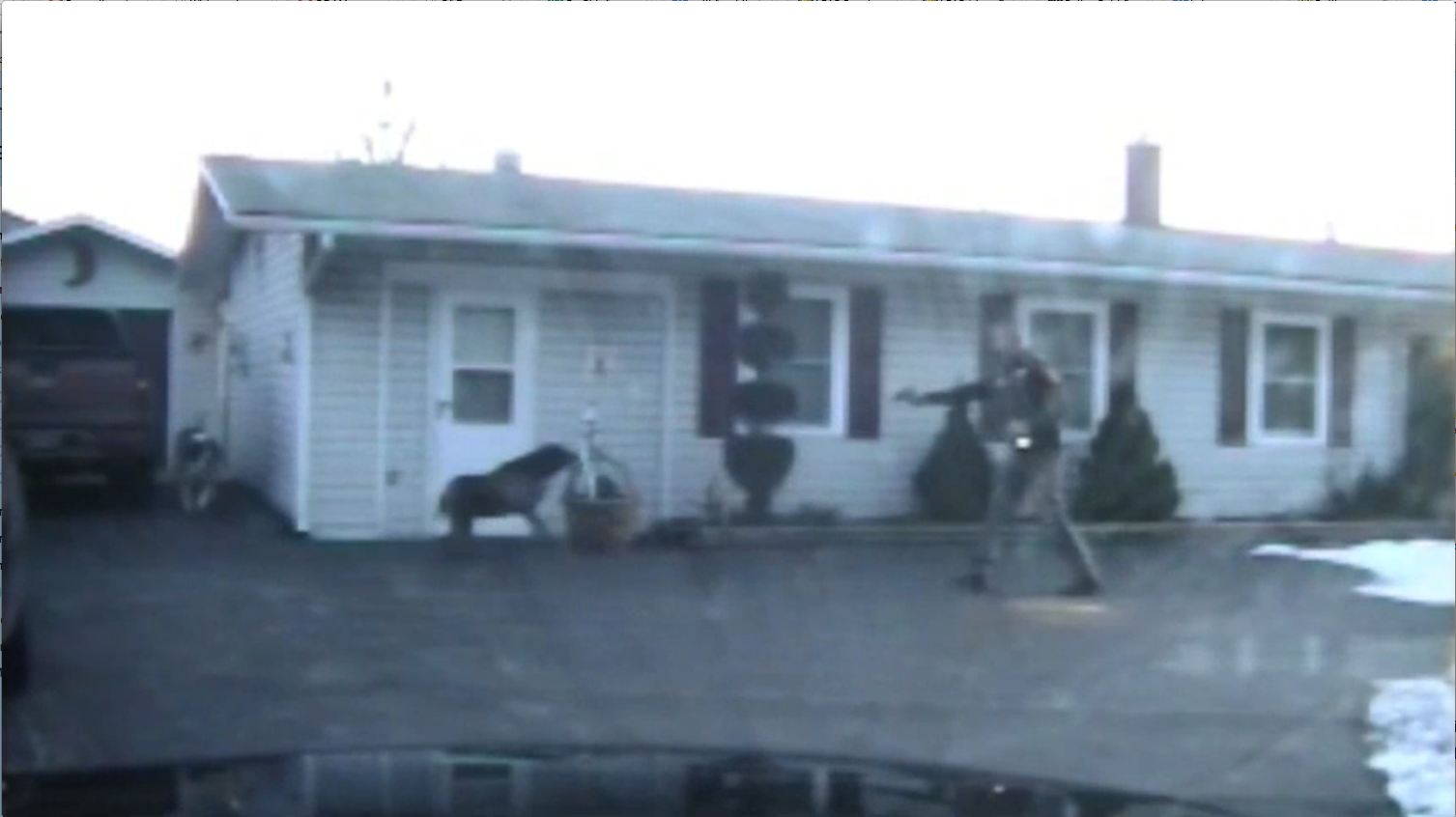 Of Dogs and Men - Dashcam footage captures the shooting of Brandi Jenkins.png