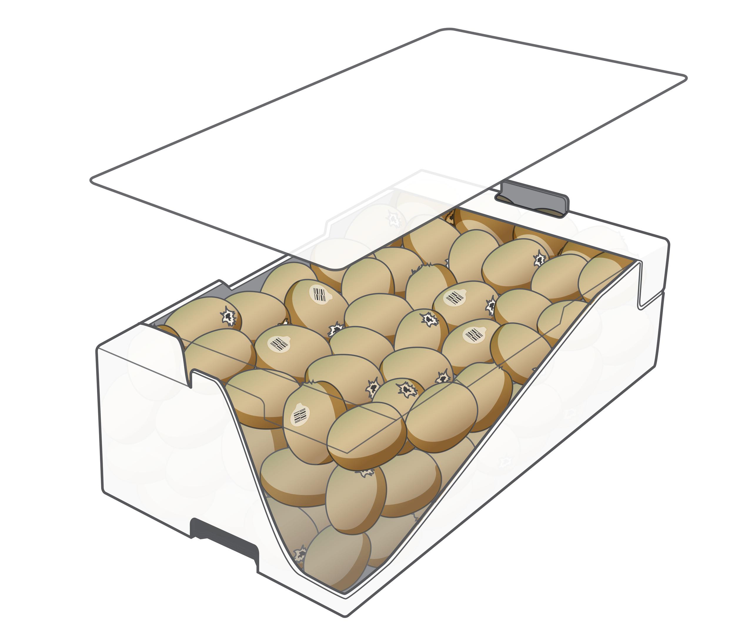 9 kg Bulk Box