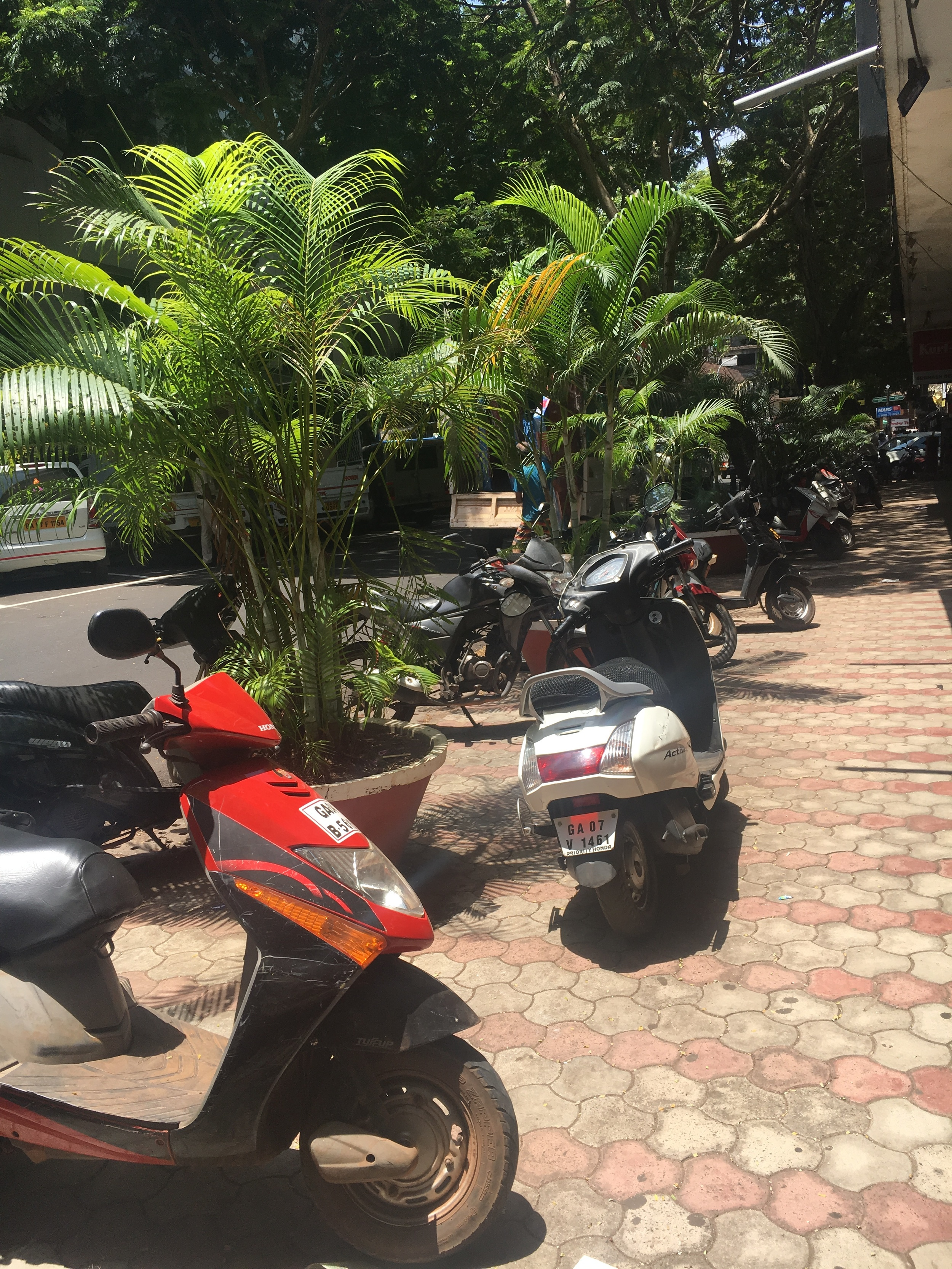 the walk over to the panaji town was incredible; scooters are everywhere.