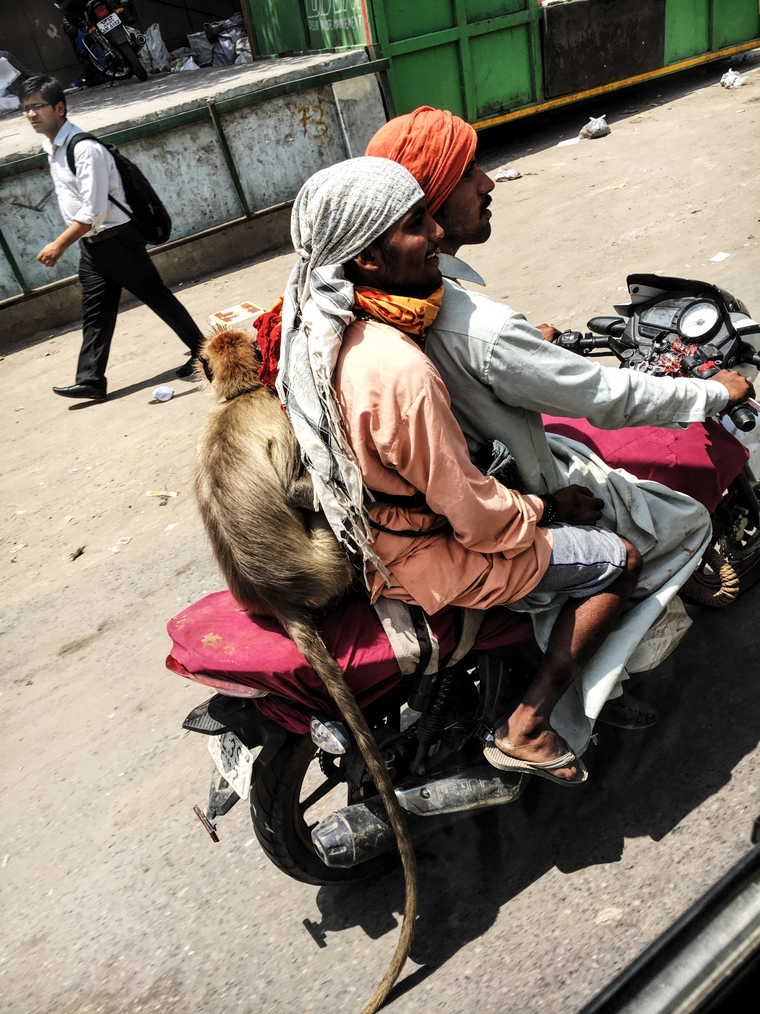 And of course, this. #india