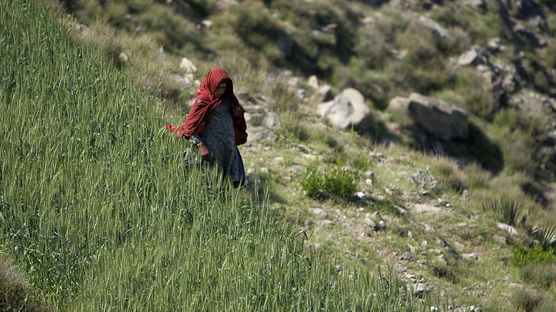 red shawl 3.jpg