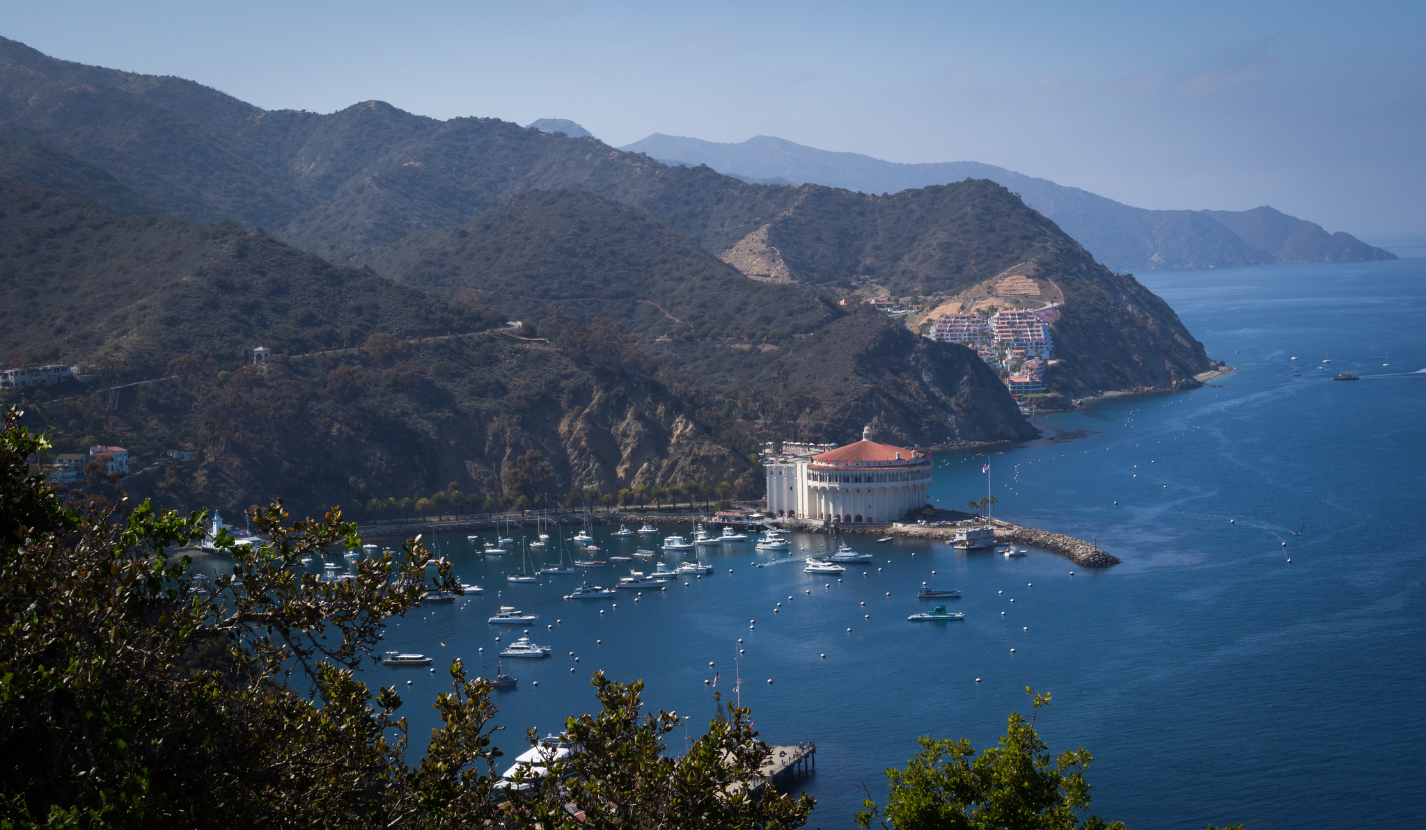 Catalina Island   https://www.flickr.com/photos/staticantics/13966191744/