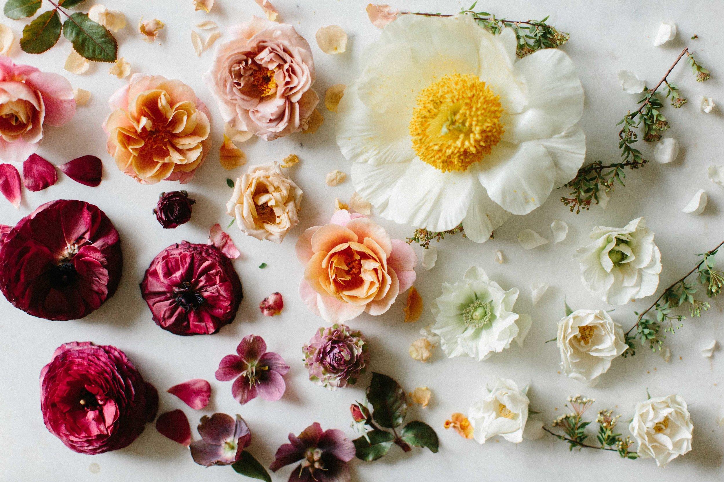 Grace+Blooms-16.jpg
