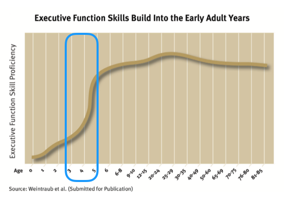 Executive Function Inbrief CDC 2011.png