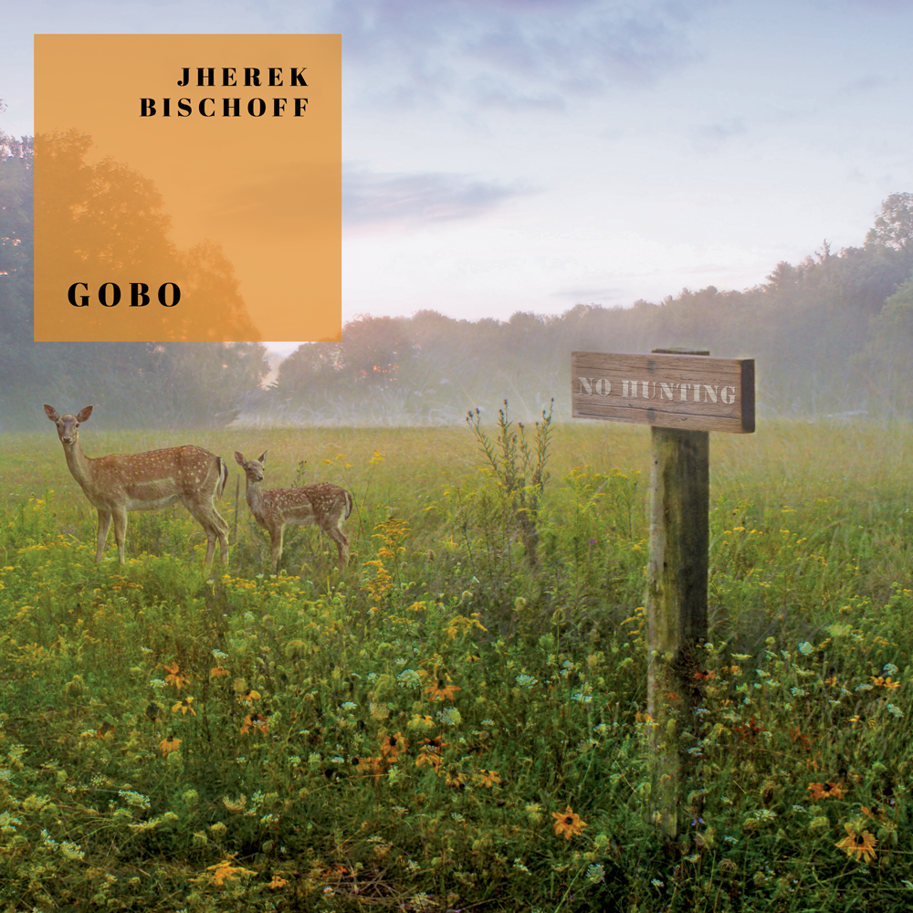 Gobo Album Artwork 1000px.png