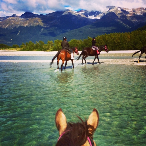 Horseback riding in Glenorchy, New Zealand