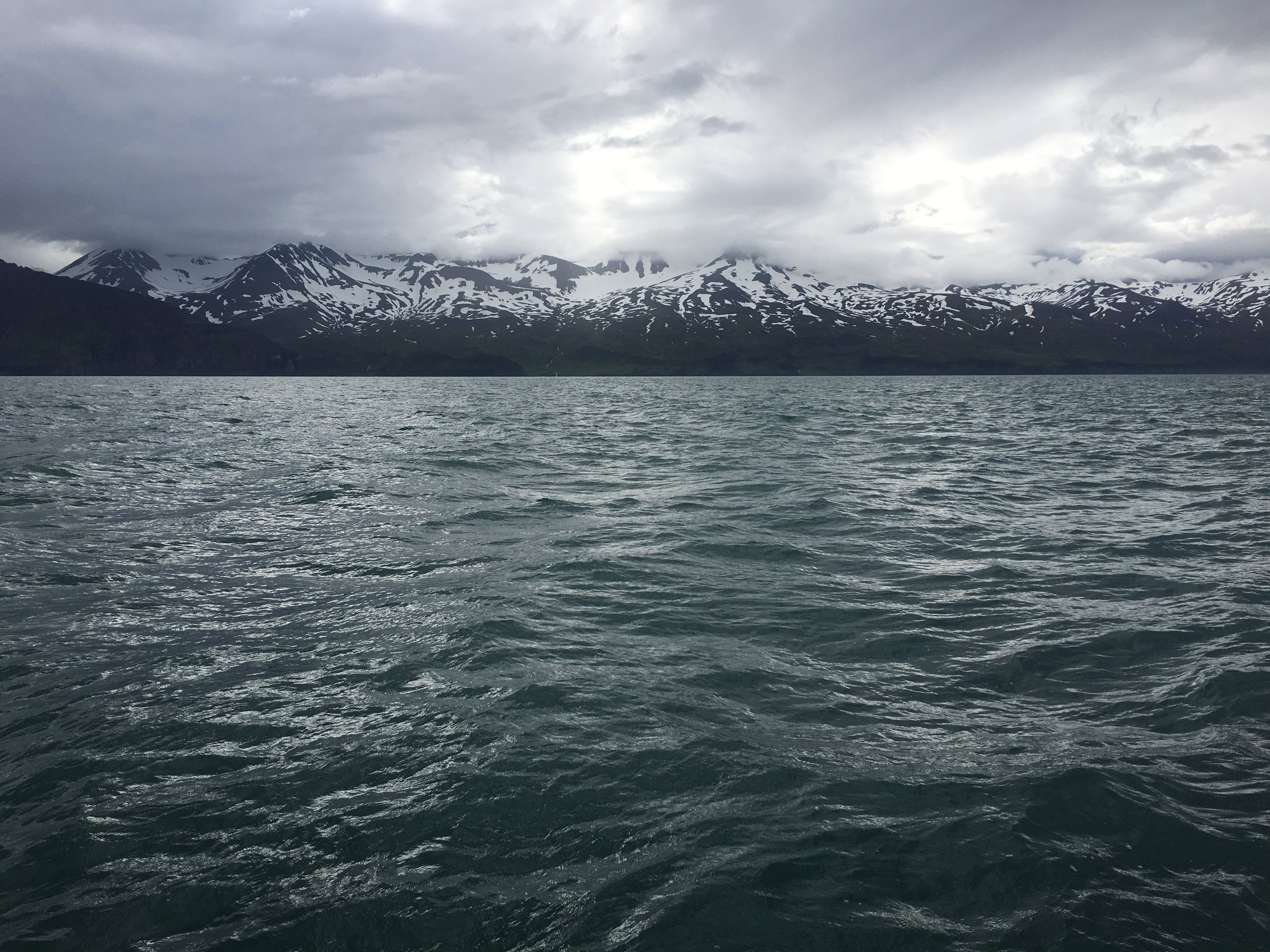 Snowcapped mountain range off the coast of Húsavík, where we went whale watching!