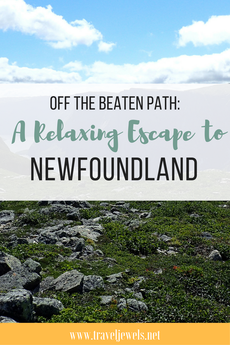 Off the Beaten Path: A Relaxing Escape to Newfoundland