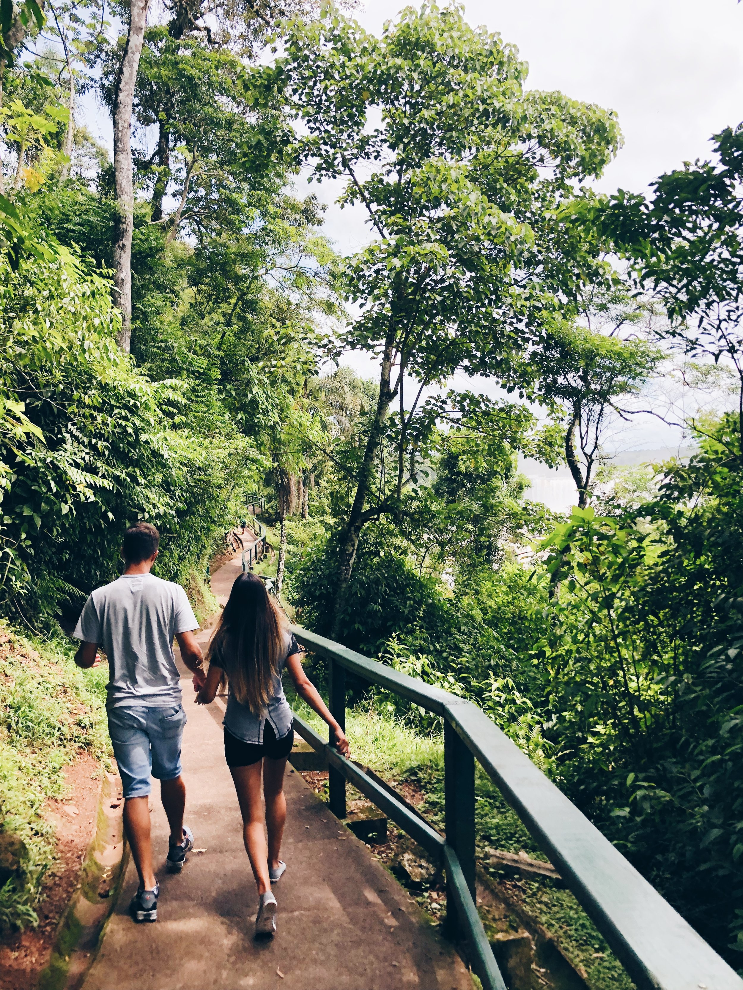Trail to Iguazu Waterfalls