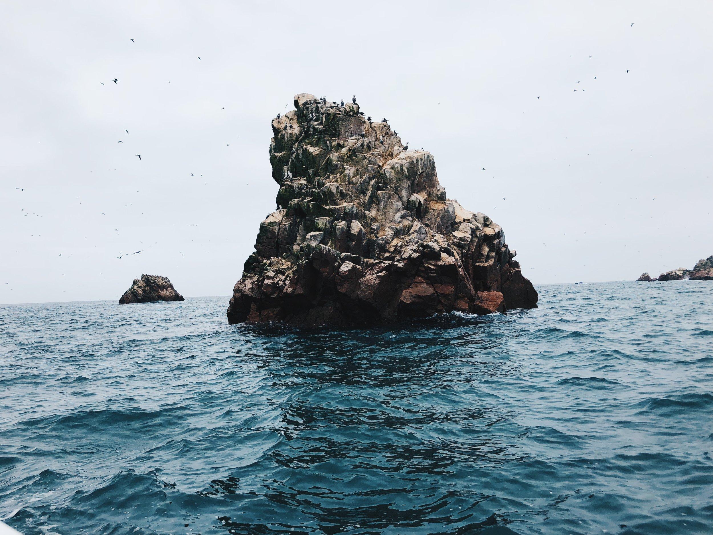 Ballestas boat tour
