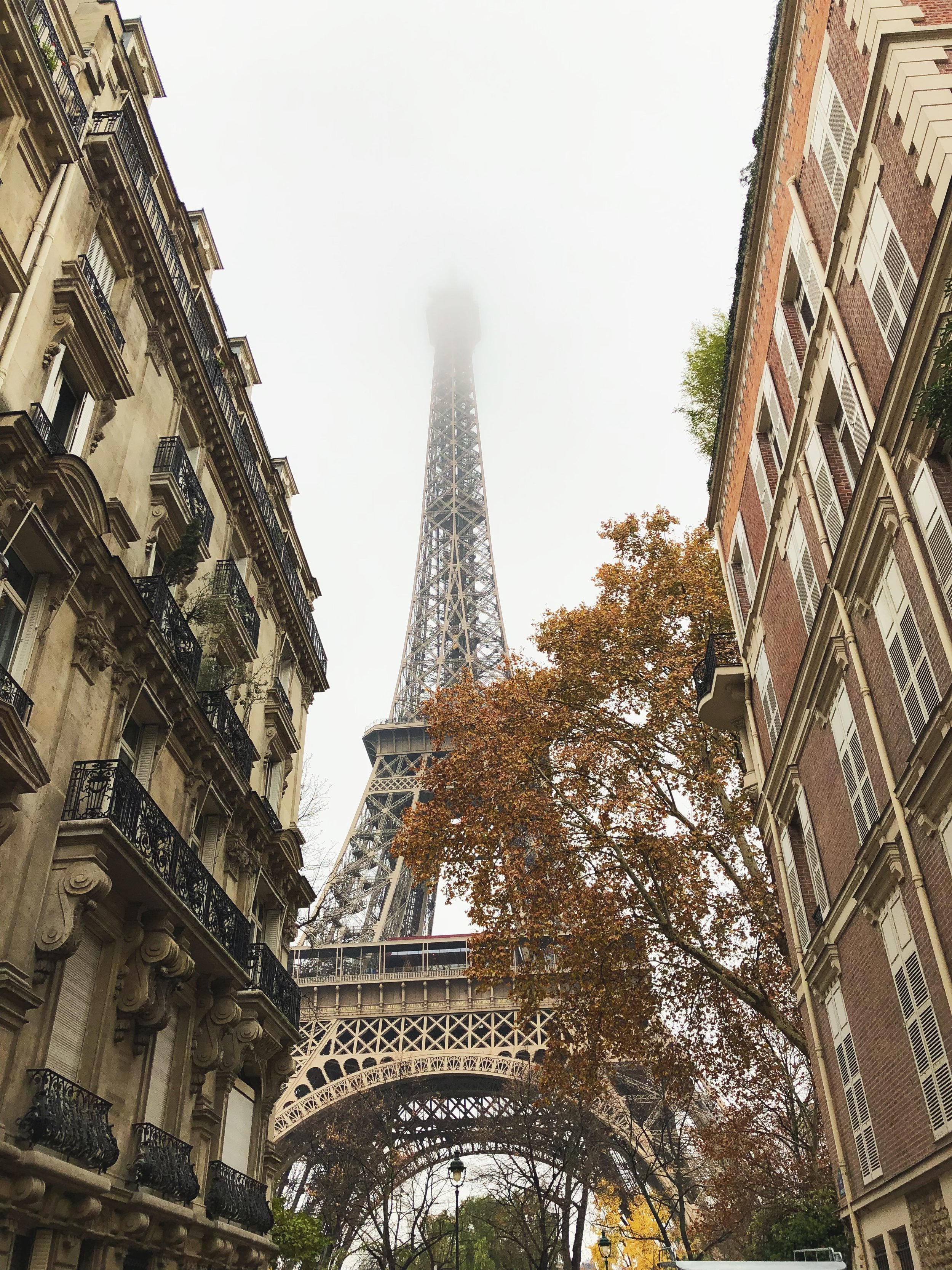 Guide to Visiting Paris in November- Eiffel Tower in the Fall