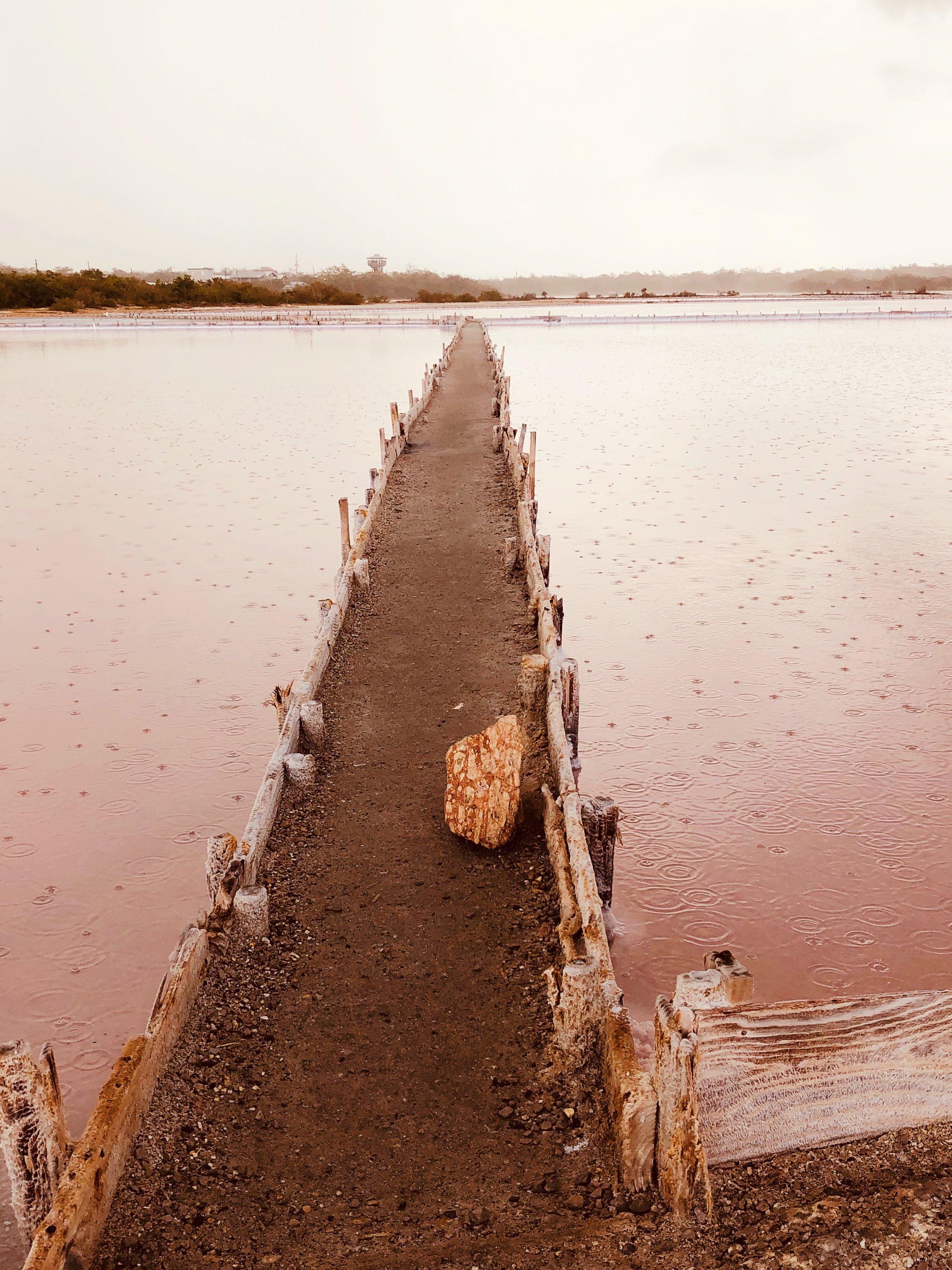 Las Salinas Salt Flats