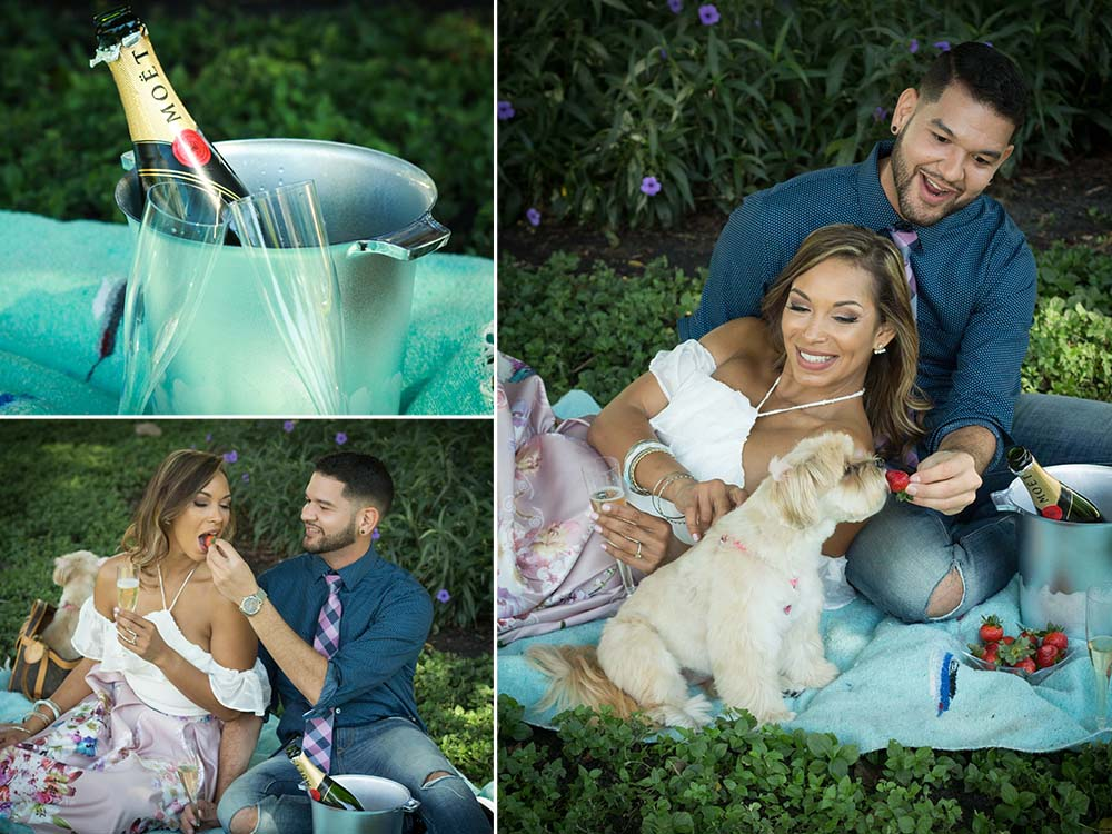 engagement-photos-los-angeles-southern-california-socal-destination-picnic-engaged-hispanic-couple-happy-dog-lovers-champagne-fruit-photographer-wedding.jpg