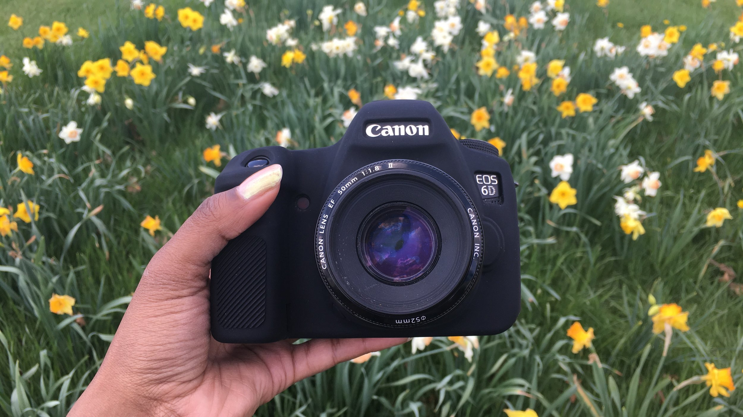 canon-6d-full-frame-camera-upgrade-los-angeles-photographer-photos-by-arie-arie-t-photography-family-kids-engagement-flower-bed-details