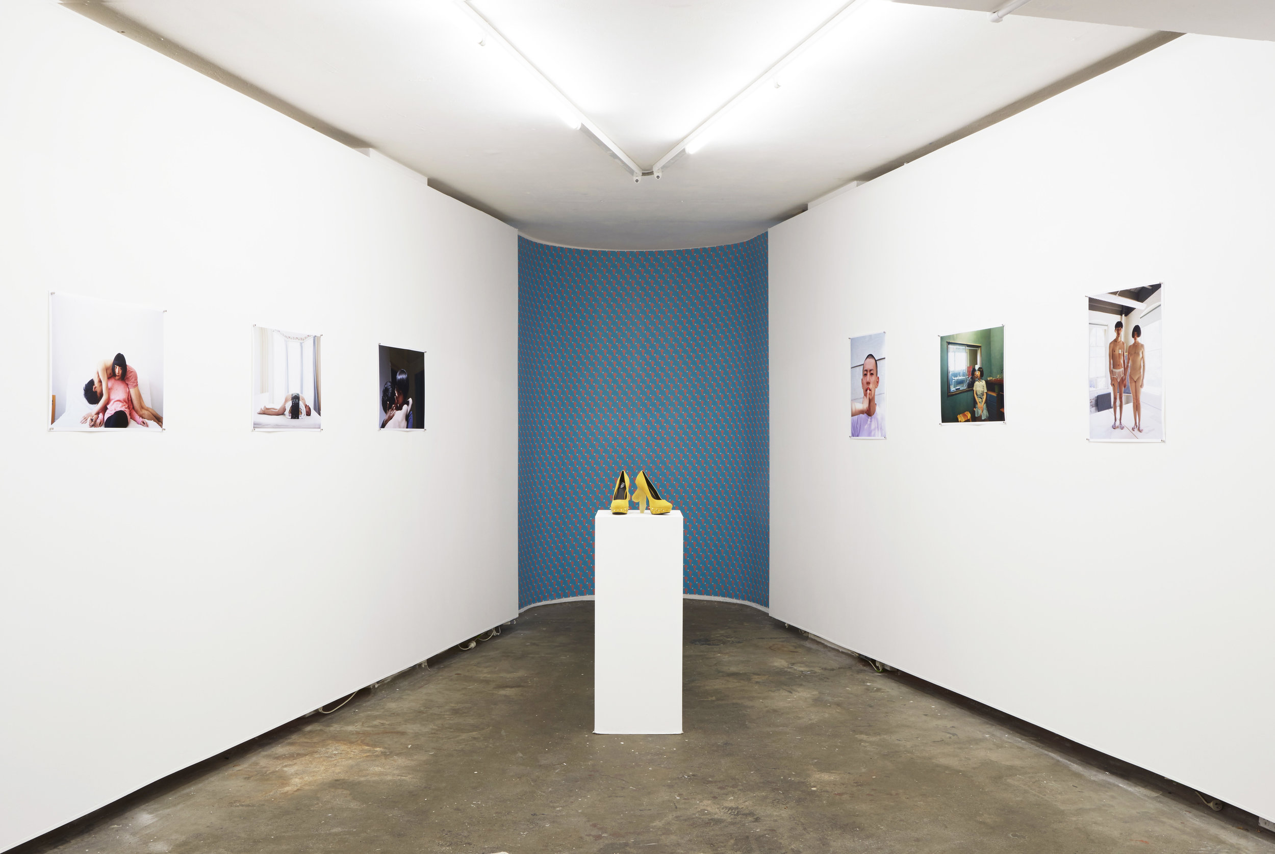 "Solo Show ""Some Words Are Just Between Us"" curated by Sophia Cai, First Draft Gallery, Sydney, Australia, 2016"