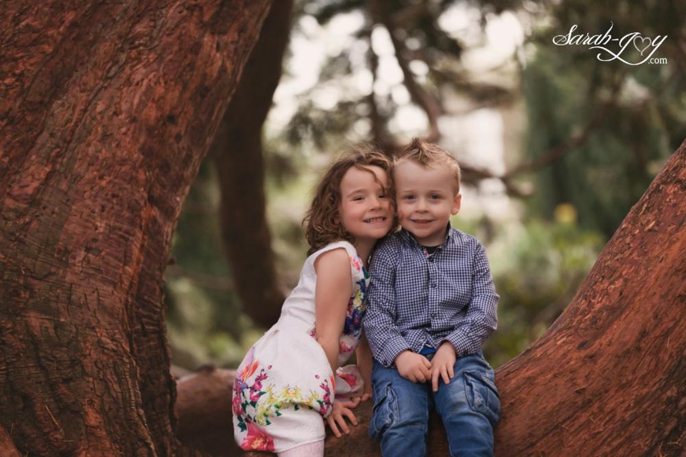 siblings cuddling in a melbourne tree