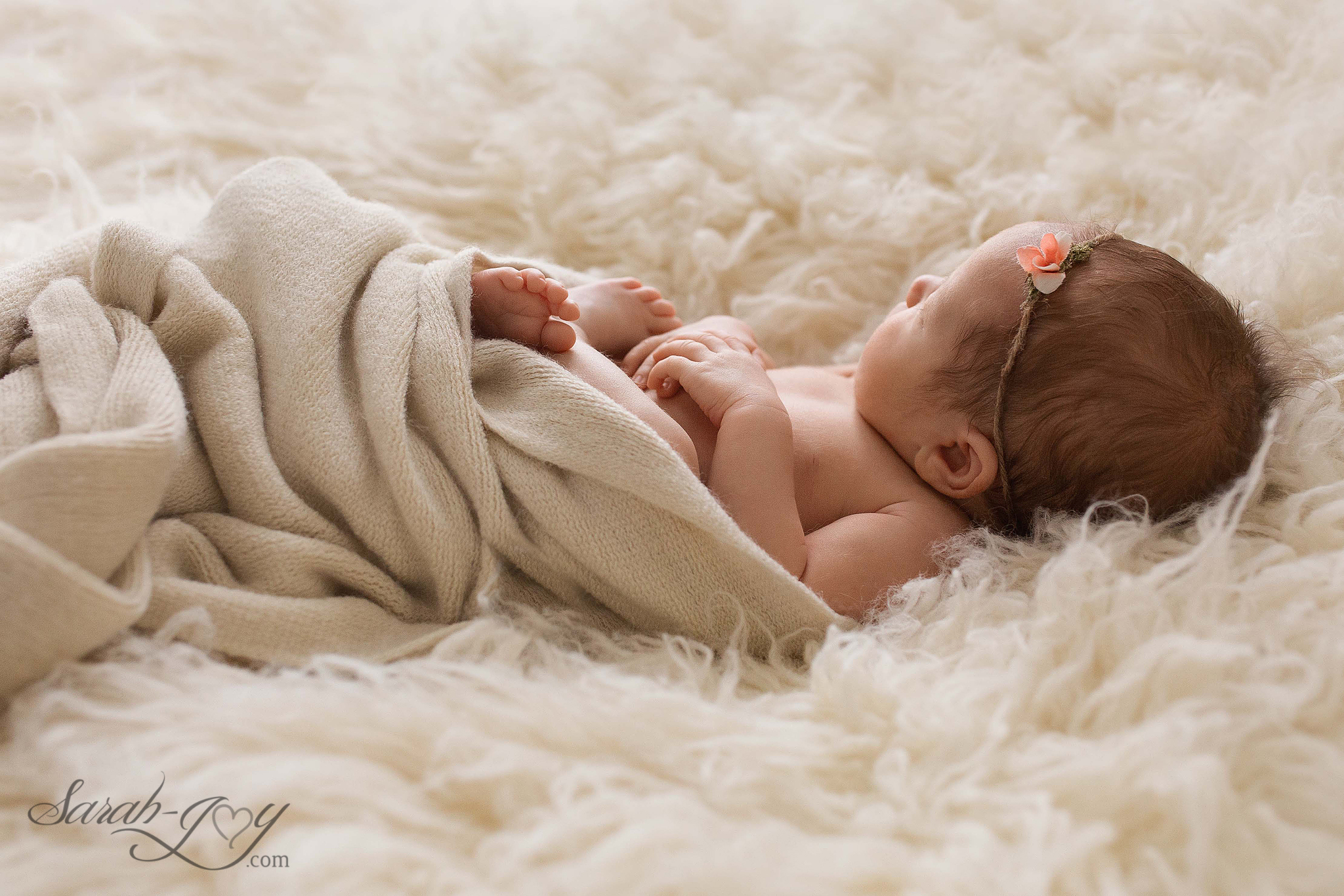 Fitzroy newborn baby and family photographer