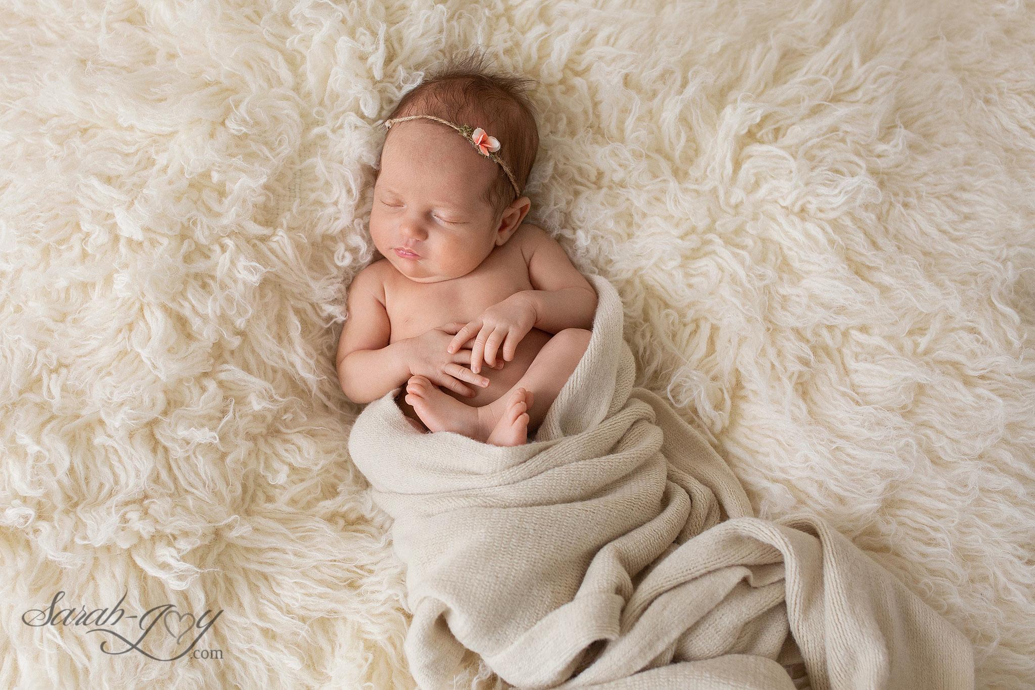 fitzroy newborn photography