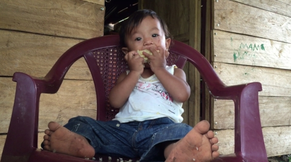 Little David Luis, munching on some high-protein FORTALEZA corn that we convinced farmers to plant this year. Harvesting season has begun, and David Luis is part of the first generation in Guatemala who will get this extra protein as part of a regular diet! 10/26/16