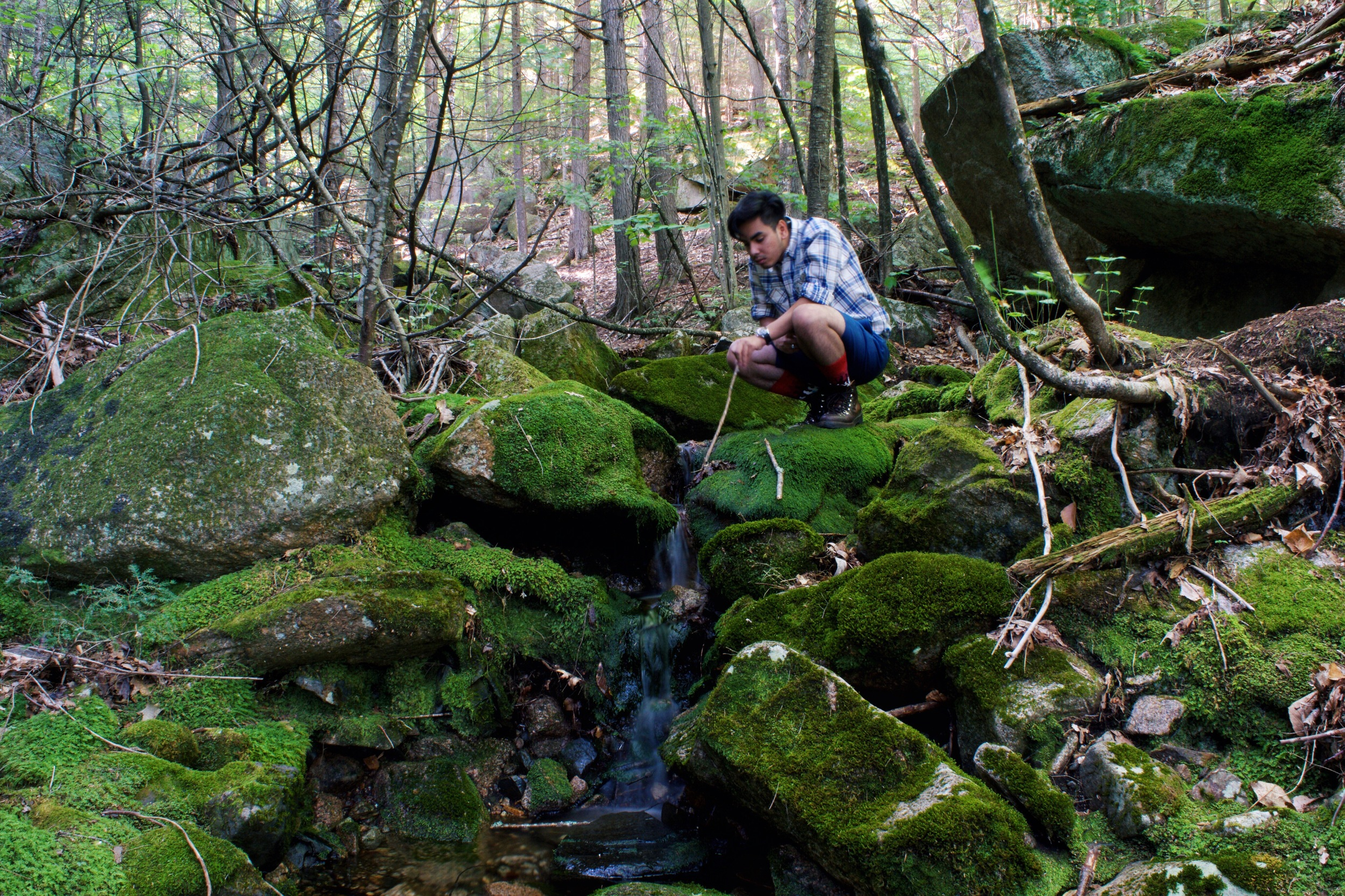 Survival 101: Locate Water Source