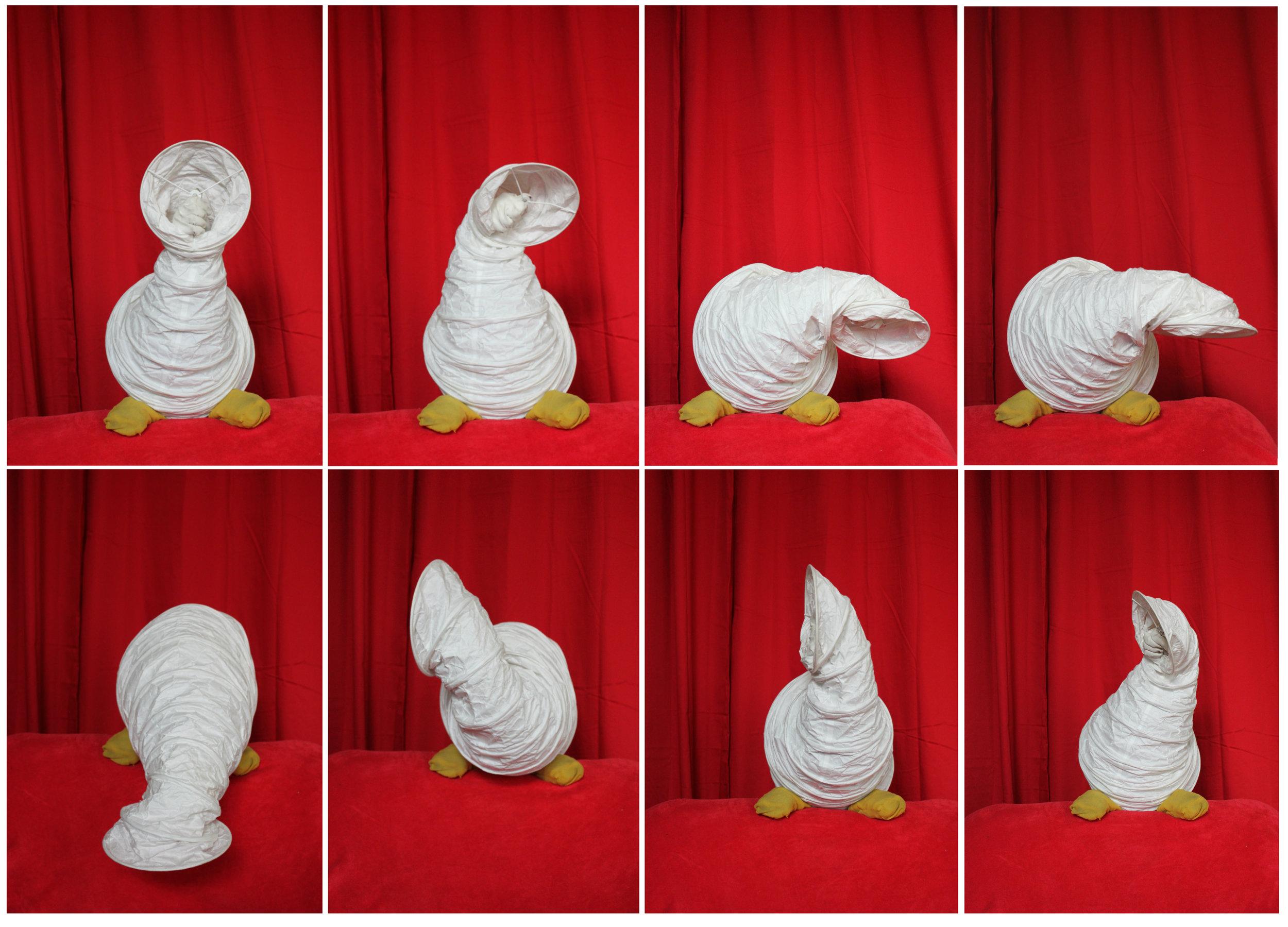 Goose collation.jpg