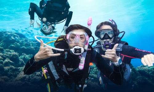 Learn to Dive - Are you ready to get certified? Start TODAY with the most popular and fun diving course in the world!