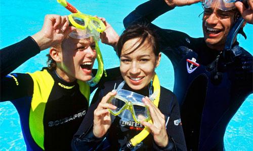 Dive Trips -