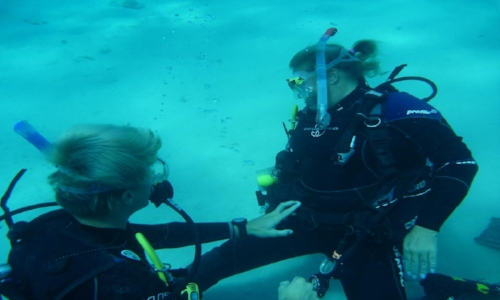 Instructor - Ready become a PADI Instructor? Check out our IDC dates including accommodation.