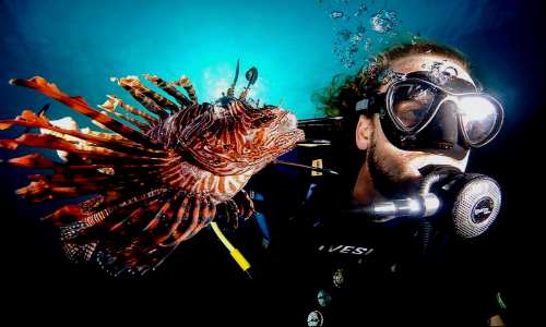 PADI Lionfish Specialty Course Curacao
