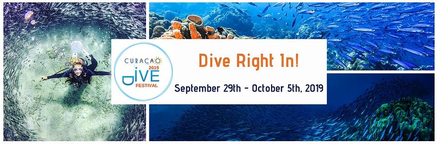Dive Festival.jpg