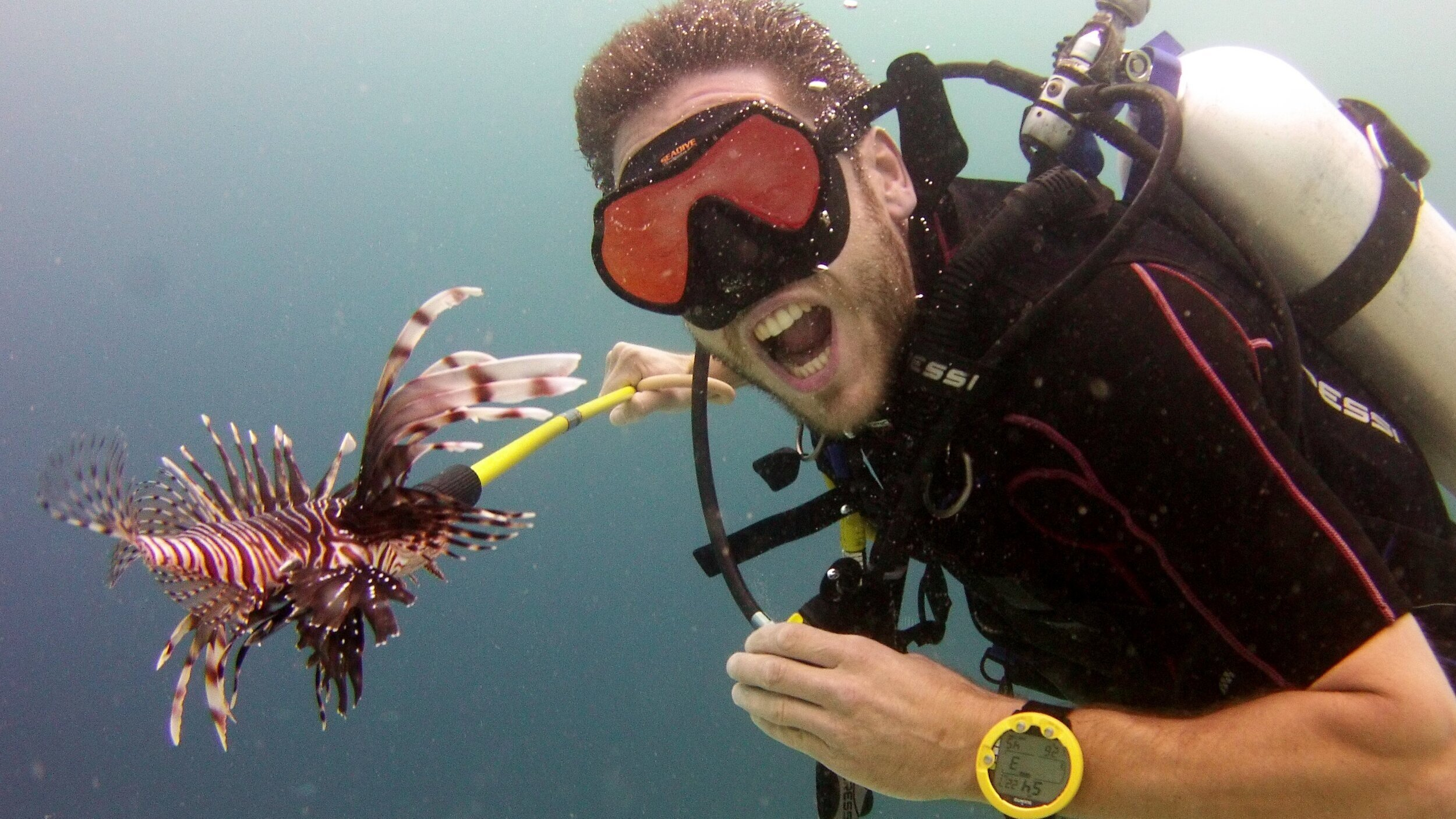 Hunt Lionfish - Protect Curacao Reef