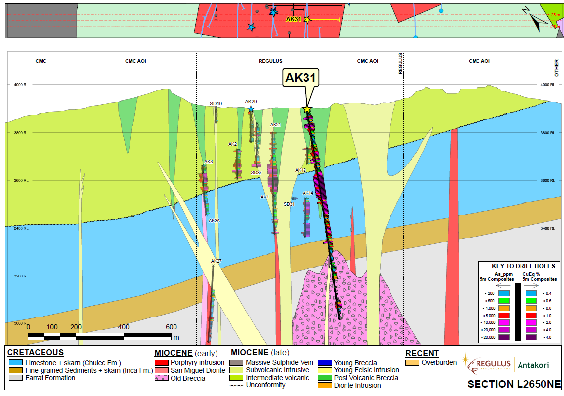 Figure 2: Schematic geologic cross section L2650NE indicating projected location and results of AK-19-031