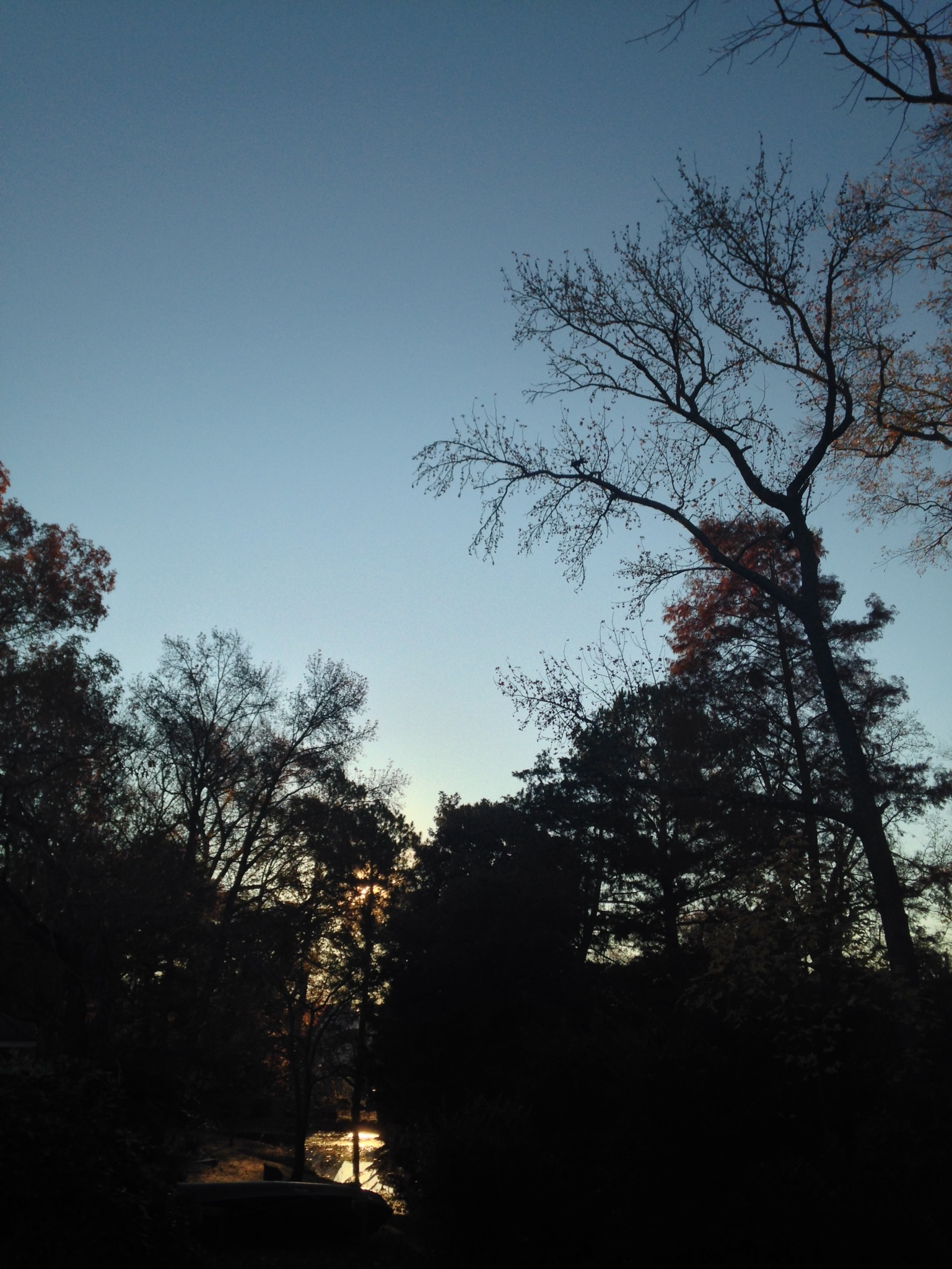 Vanessa_Fleming_sunrise_meditation
