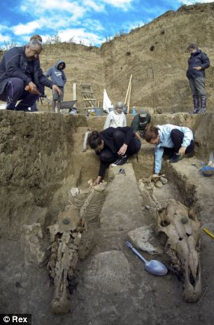 The chariot and horse skeletons are 2,500-years-old and were discovered in the village of Svestari in north-east Bulgaria2.jpg