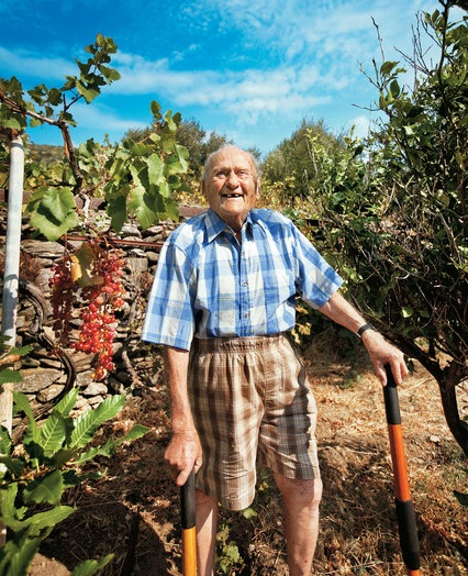 Stamatis Moraitis tending his vineyard and olive grove on Ikaria.   Moraitis, who did not remember his exact age — either 98 or 102 — was featured in numerous international media stories touting his puristic way of life on his beloved island of Ikaria and the fact that almost four decades after a lung cancer diagnosis he even outlived his doctors who predicted his imminent death back in the 1970s.