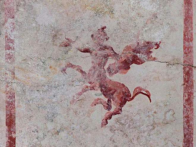 Detail of a decoration in the newly discovered room of Nero's Golden Palace in Rome   AFP-JIJI