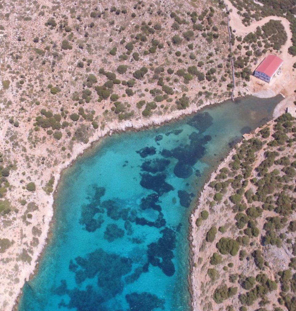 Aegean Marine Life Sanctuary, Greece. Image Source: Archipelagos Institute of Marine Conservation