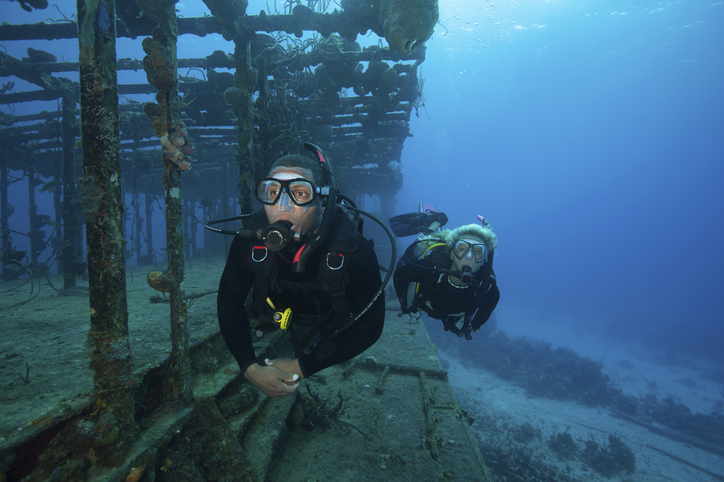 The remains of an Ancient Greek shipwreck will soon be made available to the public.