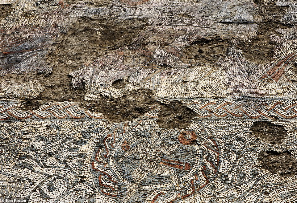 A close-up view of the intricate Roman mosaic. Volunteers who worked on the dig to uncover the masterpiece were mainly from the Boxford History Project.
