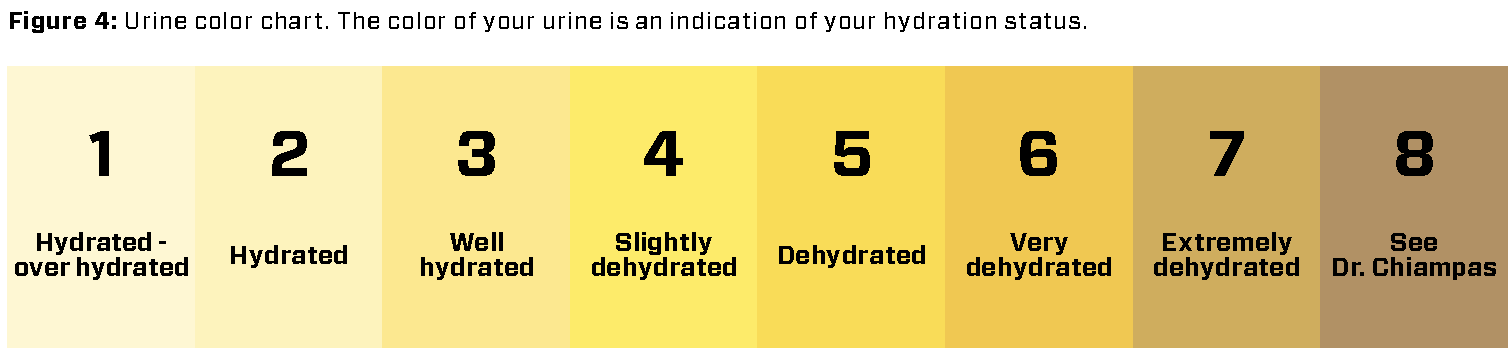 2019 R2R Hydration_urine.png