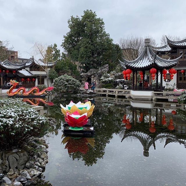 We observed the Lunar New Year with a trip to the @lansuchinesegarden and a delicious home-cooked hot pot meal. We feel so lucky to be able to celebrate with good food, family, and friends. Wishing a year of health and happiness to all!
