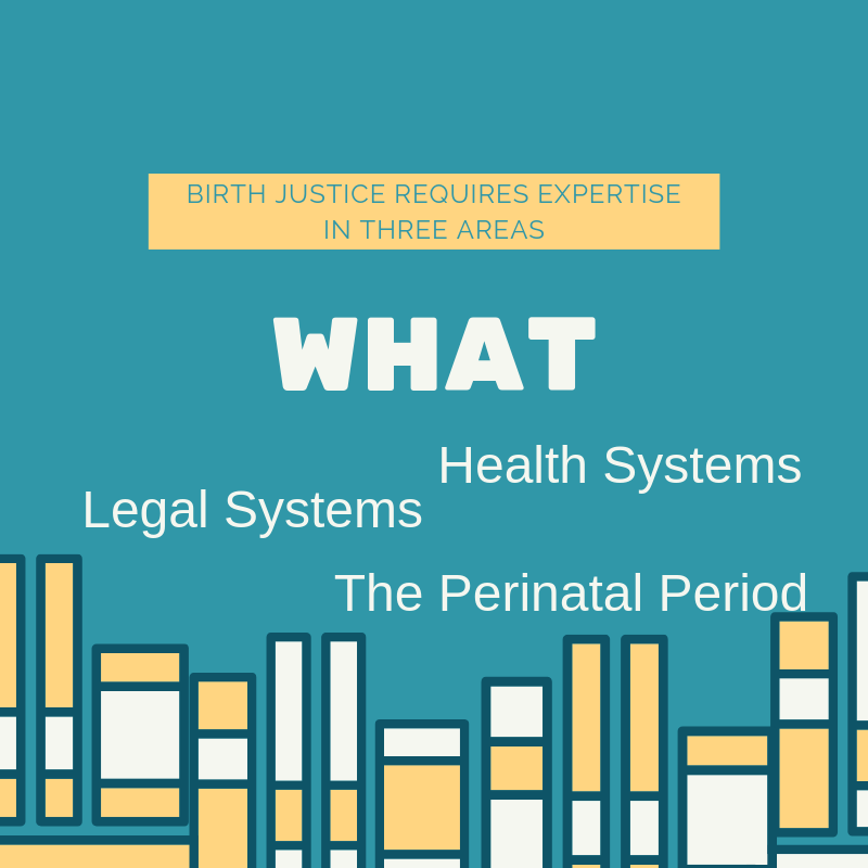 WHAT - We are experts in the health, legal and biological systems related to the perinatal period.We can help you increase your knowledge in these three key areas.We don't limit ourselves to any single issue, preferring to capitalize on the ways issues intersect, overlap and inform one another.We stay in the game to keep learning from doing.We keep learning from sharing what we know.