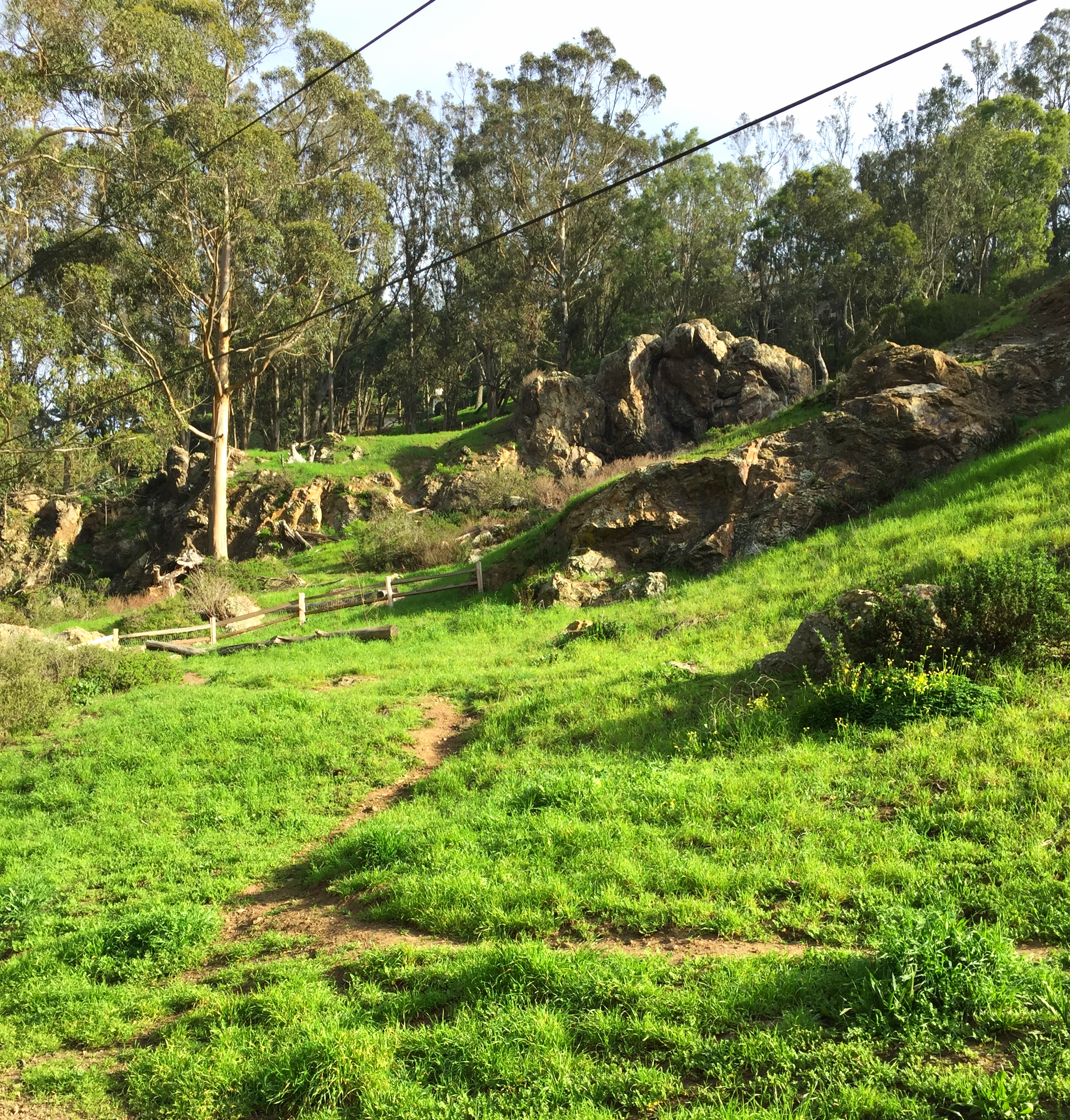 One of the many trails and green spaces of Glen Park.